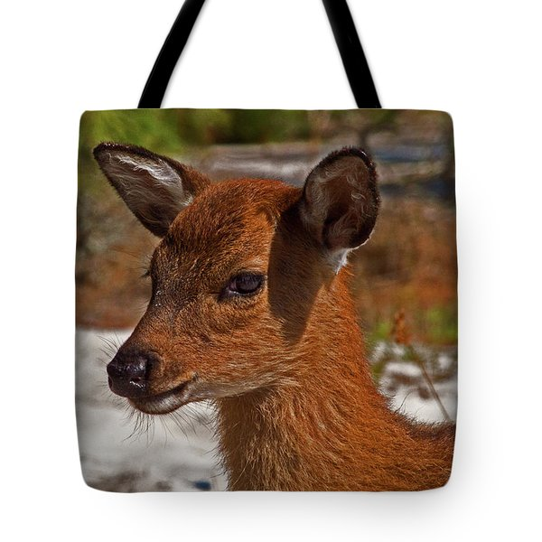 Tote Bag featuring the photograph Assateague Island Sika Deer Fawn by Assateague Pony Photography