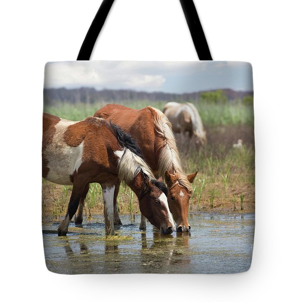 Assateague Ponies Tale Drink Tote Bag