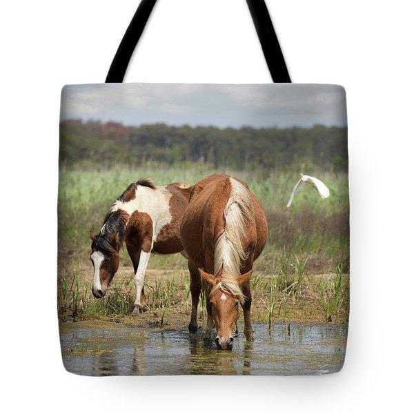 Assateague Pony Pair Tote Bag