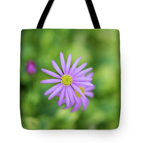 Tote Bag featuring the photograph Pilliga Daisy by Tim Gainey