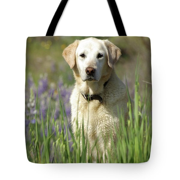 Tote Bag featuring the photograph At Attention by Jim and Emily Bush