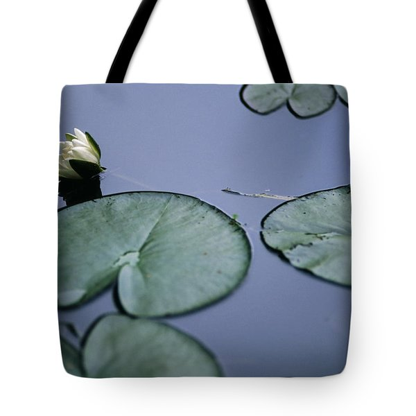 Tote Bag featuring the photograph At Claude Monet's Water Garden 2 by Dubi Roman
