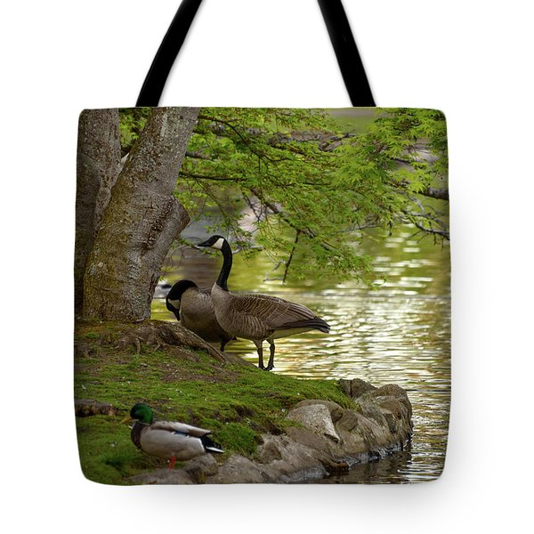 At Days End Tote Bag