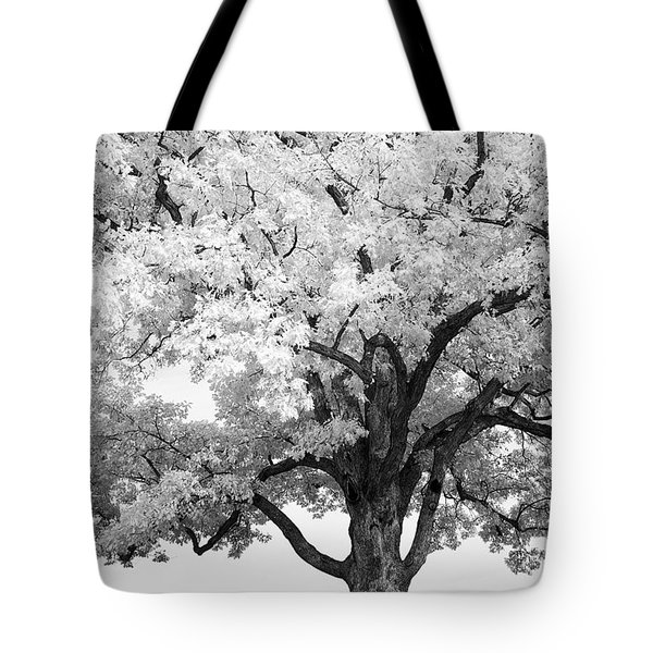 At Devils Den Tote Bag by Paul W Faust -  Impressions of Light