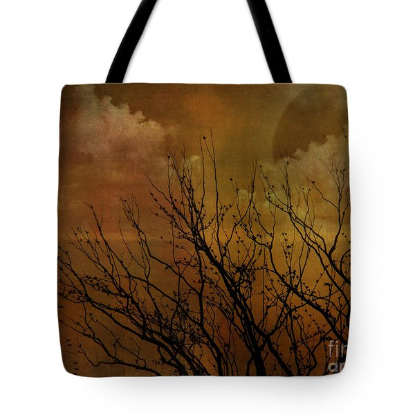 At End Of Day IIi Tote Bag