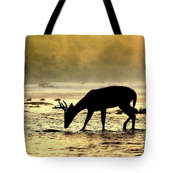 At Home Tote Bag