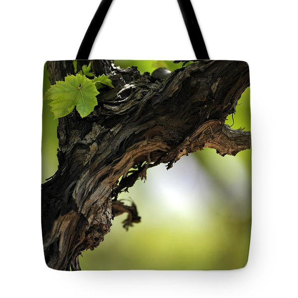 Tote Bag featuring the photograph At Lachish Vineyard by Dubi Roman