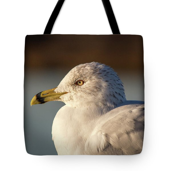 At Peace Tote Bag
