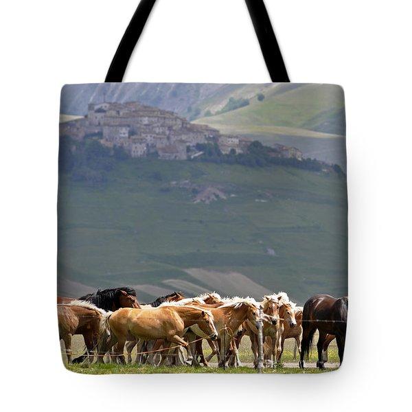 Castelluccio Di Norcia, Parko Nazionale Dei Monti Sibillini, Italy Tote Bag