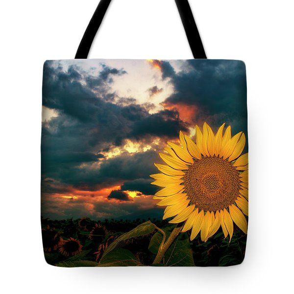At Sunset Tote Bag