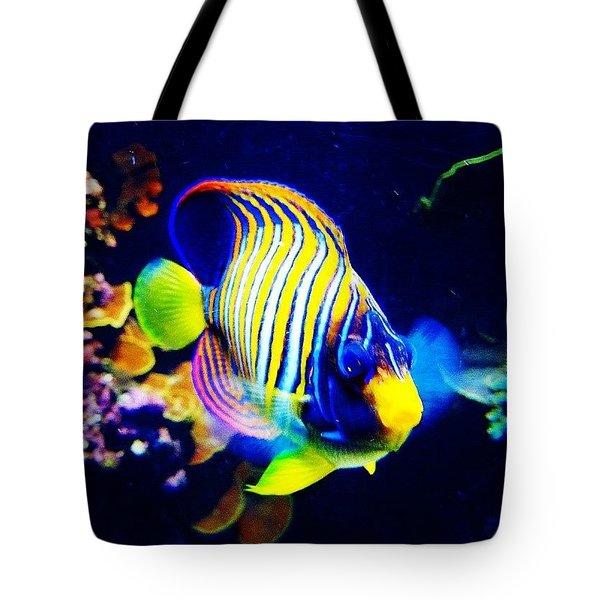 At The Denver Aquarium. #fish #denver Tote Bag