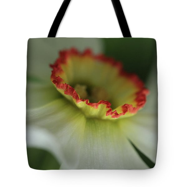 At The Edge Of The Crater Tote Bag