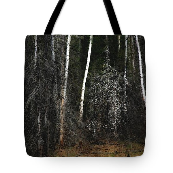 At The Edge Of The Forest  Tote Bag by Jim Vance