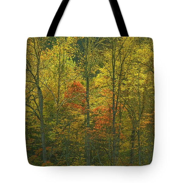 At The Edge Of The Forest Tote Bag by Ulrich Burkhalter