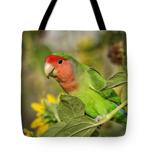 At The End Of The Rainbow  Tote Bag by Saija  Lehtonen