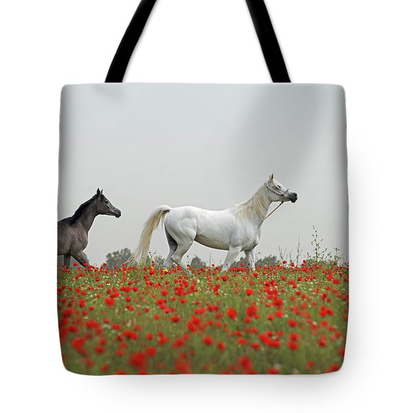 At The Poppies' Field... Tote Bag
