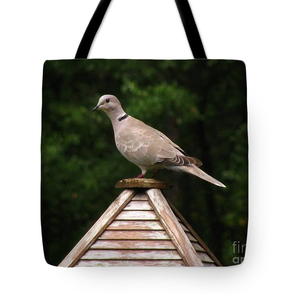 At The Top Of The Bird Feeder Tote Bag