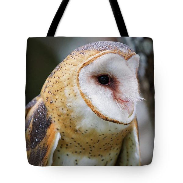 Tote Bag featuring the photograph Athena In A Tree by Arthur Dodd