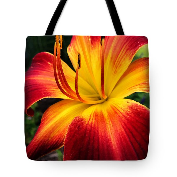 Athenagoras Of Syracuse Tote Bag