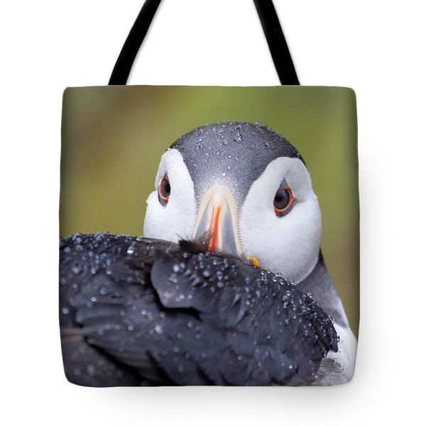 Atlantic Puffin With Rain Drops Tote Bag