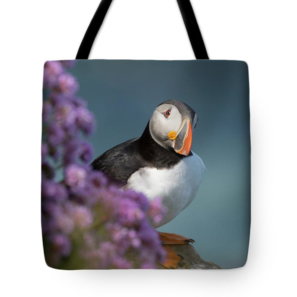 Tote Bag featuring the photograph Atlantic Puffin - Scottish Highlands by Karen Van Der Zijden