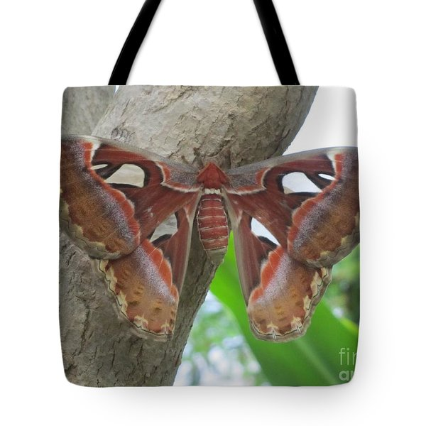 Atlas Butterfly Tote Bag