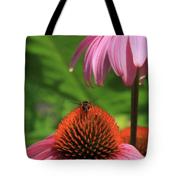 Atop A Cone Tote Bag by Karol Livote