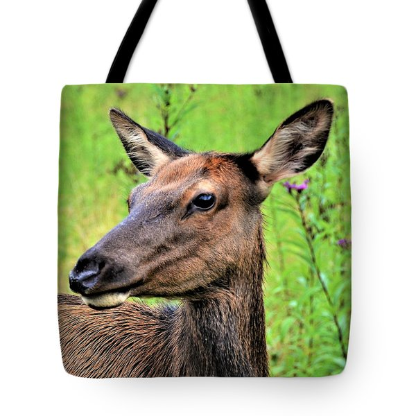 Attentive Yearling Tote Bag