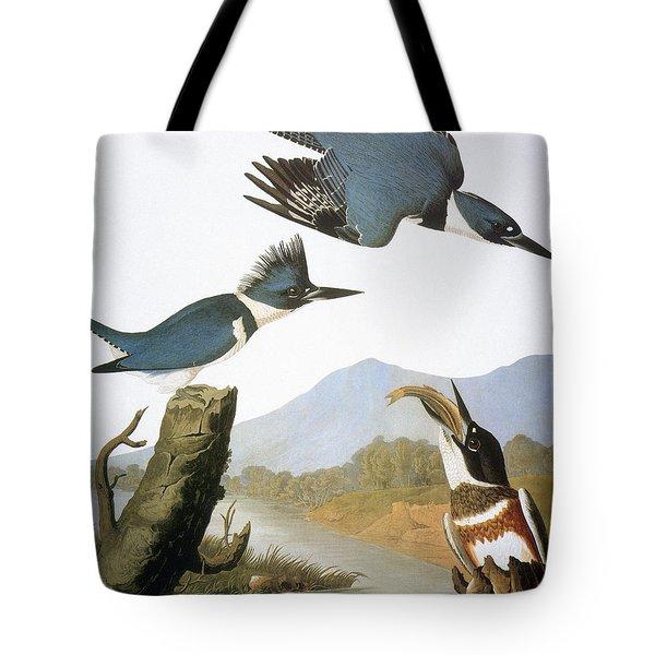 Audubon Kingfisher Tote Bag