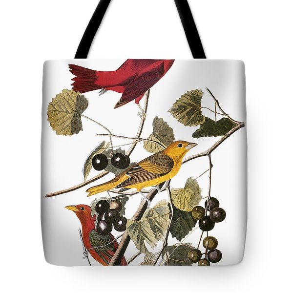 Audubon: Tanager Tote Bag by Granger