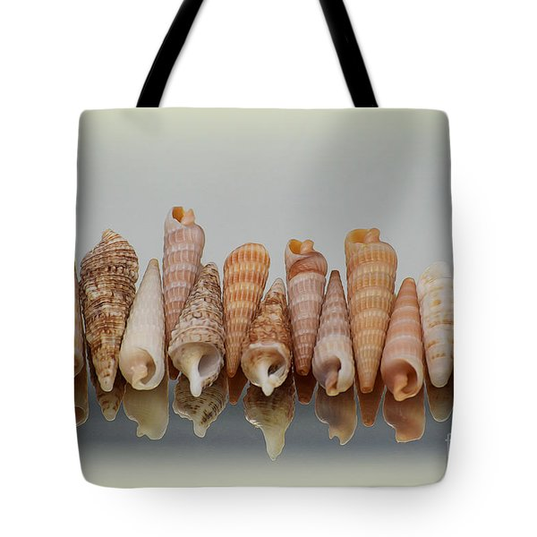 Auger Shells Tote Bag by Patti Whitten