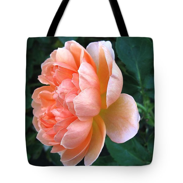 Tote Bag featuring the photograph August Rose 09 by Joyce Dickens