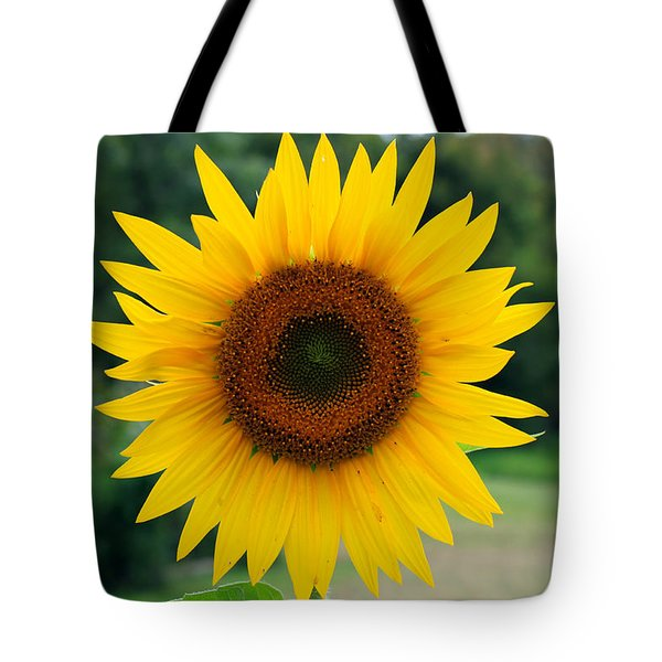August Sunflower Tote Bag by Jeff Severson