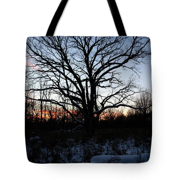 Tote Bag featuring the photograph Aura Fc by Dylan Punke