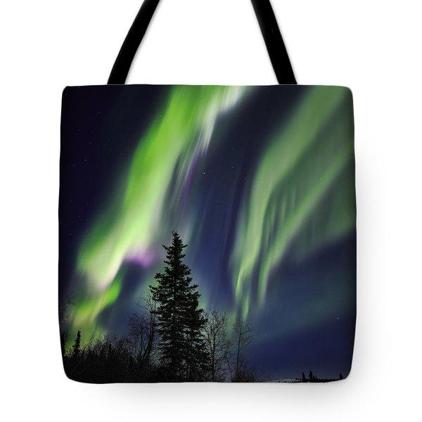 Aurora Grasp Tote Bag