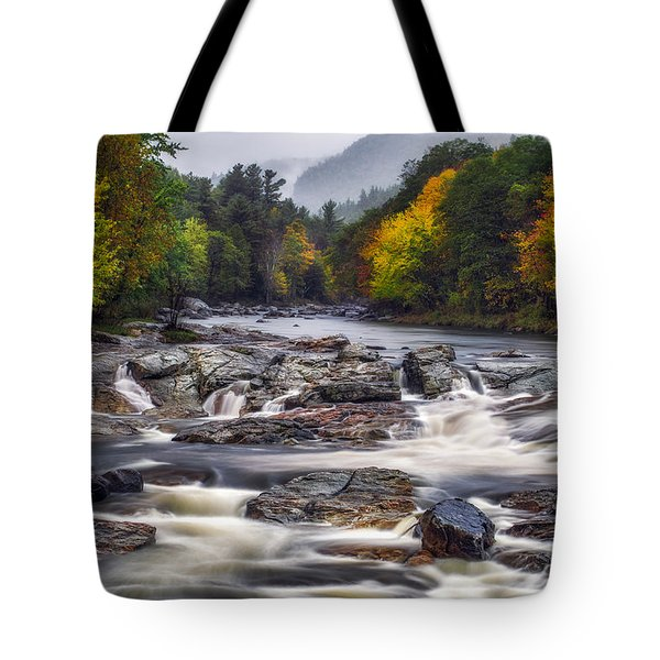 Tote Bag featuring the photograph Ausable Cascades by Mark Papke