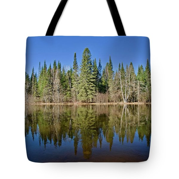 Tote Bag featuring the photograph Ausable Reflections 1768 by Michael Peychich