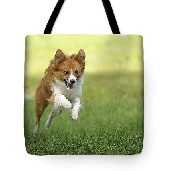 Aussi At Play Tote Bag