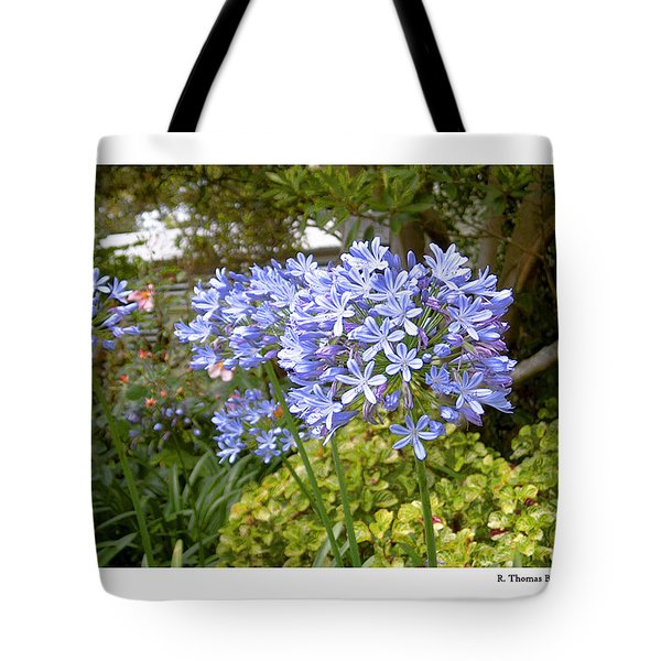 Tote Bag featuring the photograph Australia Plant Life by R Thomas Berner