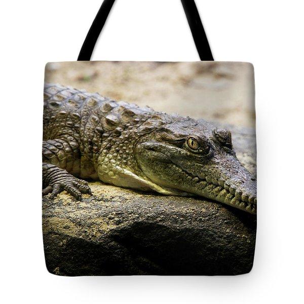 Australian Crock Tote Bag
