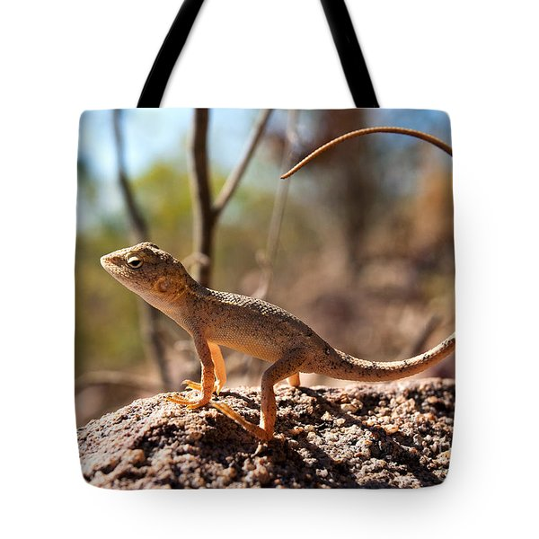 Australian Dragon Tote Bag