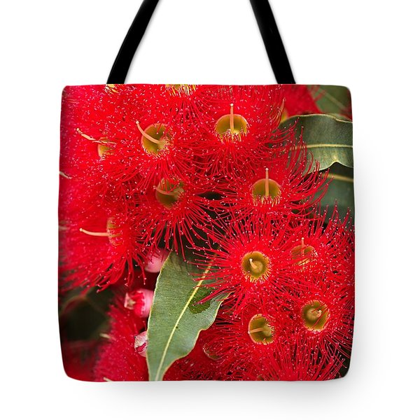Australian Red Eucalyptus Flowers Tote Bag by Joy Watson