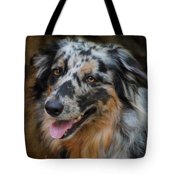 Australian Shepherd Portrait Tote Bag by Jai Johnson