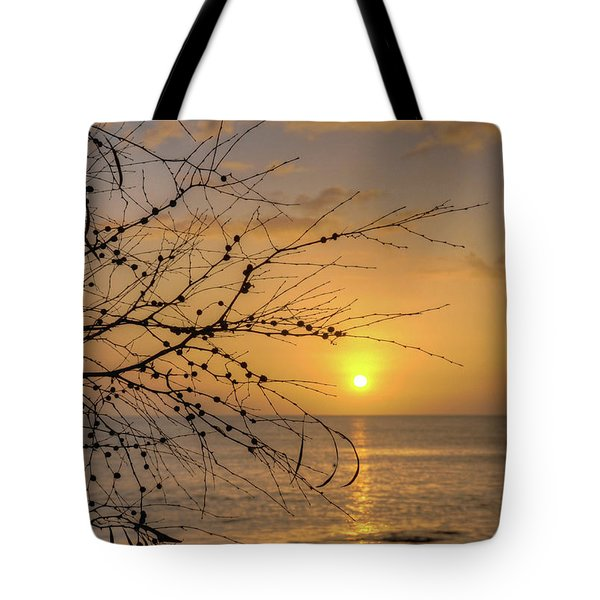 Tote Bag featuring the photograph Australian Sunrise by Geraldine Alexander