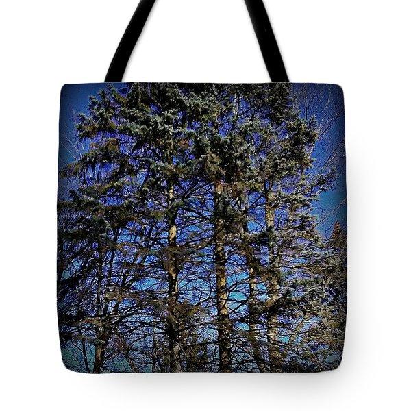 Authenticity Tote Bag