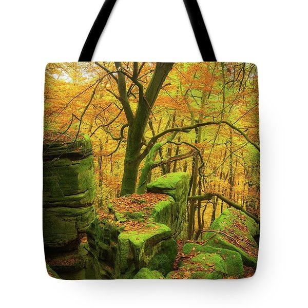 Automnal Glow Tote Bag