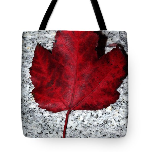 Autum Maple Leaf 1 Tote Bag by Robert Morin