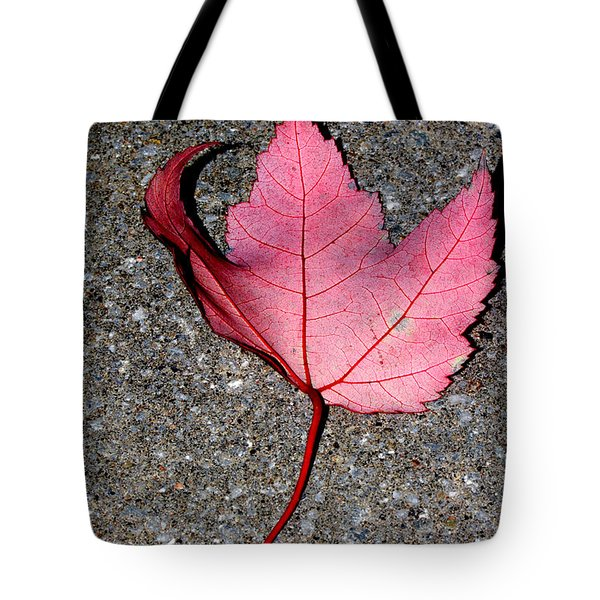Autum Maple Leaf 2 Tote Bag by Robert Morin
