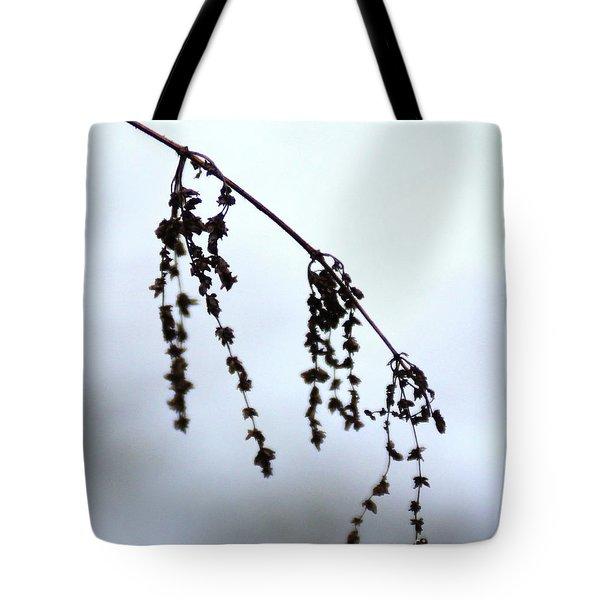 Autumn 1 Tote Bag