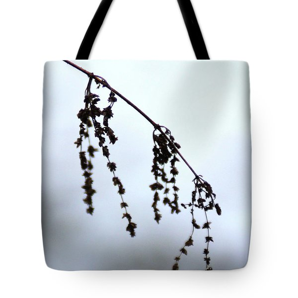 Autumn 1 Tote Bag by Wilhelm Hufnagl